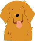 犬が耳をかく犬の病気
