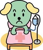 犬の下痢や嘔吐で脱水症状で危険
