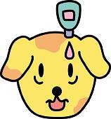 目ヤニが出る涙が止まらない犬の病気